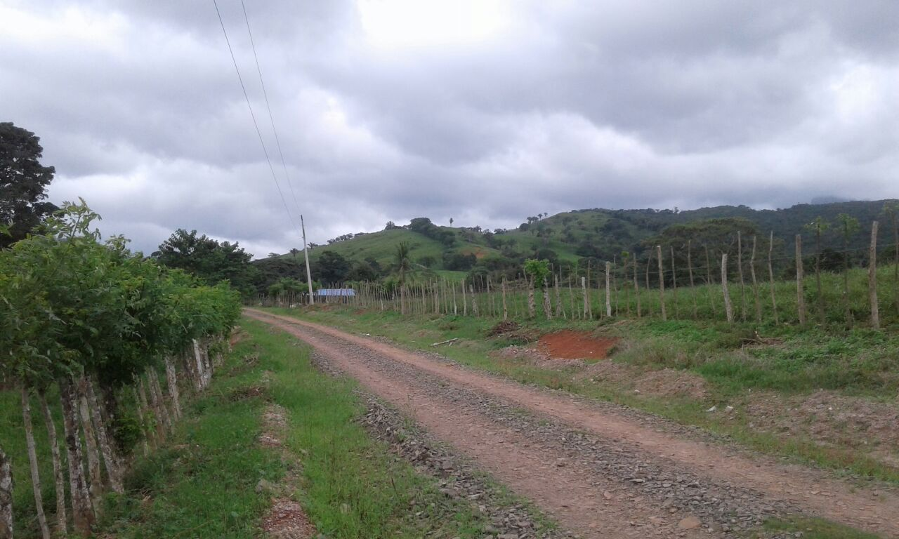 Land for Sale in Capira